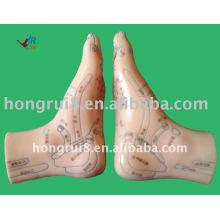 HR-515B modelo de pé de acupuntura modelo 12CM, pé de acupuntura