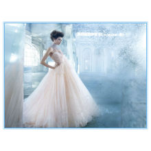 Champagne Sweetheart Neckline Tulle Ball Gown Wedding Dresses Evening Gowns (WDJL-1023)