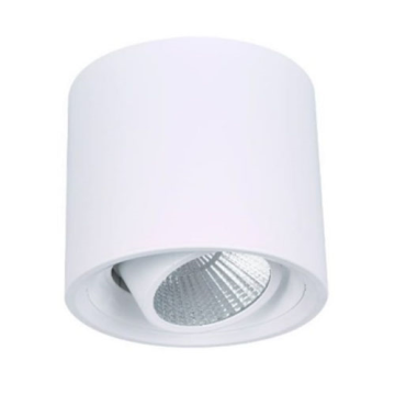Cylindrical Decorative 10W LED Downlight