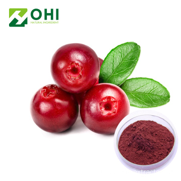 Bilberry Extract Vaccinium Myrtillus L.36% แอนโธไซยานิน