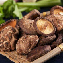 Organic  Dried Champignon Benefits