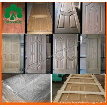 Roble / Sapele / Ash HDF Chapa de piel de la puerta