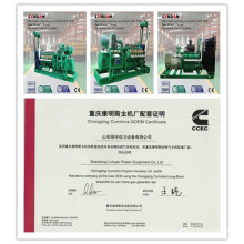 Fabricante del generador de China CUMMINS 20 Kw - 600 Kw Biomasa Genset