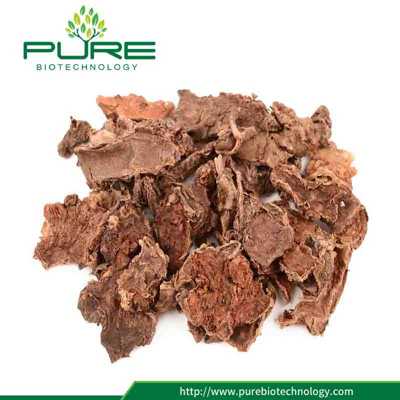 Pure Natural Dried Rhodiola Rosea Root High Rosavins 1