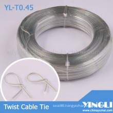 Clear Double Flat Twist Cable Tie (YL-T0.45)