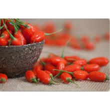 Organic Medlar / Chinese Wolfberry /Dreid Goji Berries