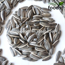 Import new crop products of vietnam