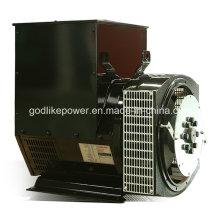 CE, одобренный ISO Китай известный бренд Бесщеточный генератор 80квт/энергии 100kva (JDG274C)