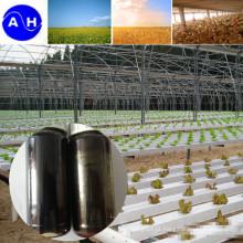 Líquido puro dos ácidos aminados orgânicos livre dos aminoácidos vegetais da fonte de Chloridion