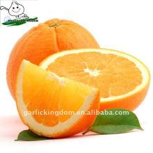 Gannan Fresh Navel Orange