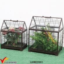Retro, rústico, vidro, painel, metal, quadro, mini, jardim, estufa
