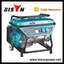 BISON (CHINA) New Technology 3kw Potência nominal Biogas Engine Generator