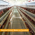 Direct Sale Farm Poultry Automatic Chicken Cage