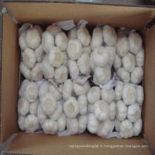 2016 L'ail blanc pur frais au prix le plus bas de la Chine