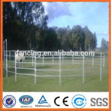 Panneaux de clôture en bétail / panneau de bétail lourd panneau de corral de bétail