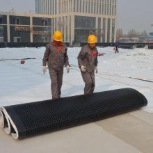 Placa de drenagem para drenagem de jardim de telhados