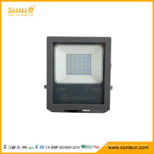 IP66 Waterproof 30W SMD Outdoor Lamp LED Floodlight with Competitive Price