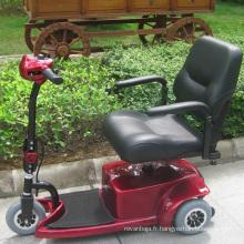 CE approuvent le scooter électrique de mobilité de tricycle à faible usage (DL24250-1)