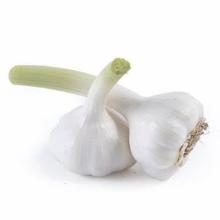 Garlic 2021 New Crop Cheap Price 5.0/5.5/6.0 cm Fresh Pure White Garlic