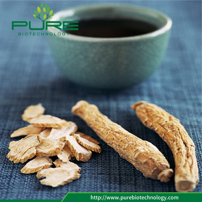 Natural Dried Red Panax Ginseng Root (5)