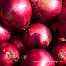 Red onion exporters concentrate cheap sell fresh onion