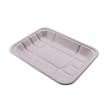 Wholesale biodegradable paper pulp bagasse food tray