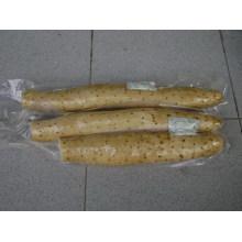 Nova colheita / qualidade superior / preço competitivo / Yam fresco (35cm e acima)