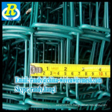 Anping Galvanized / PVC Coated Chain Link Fence / Chain Link Mesh