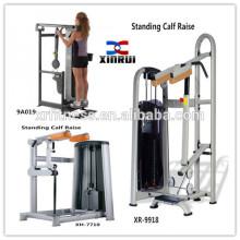 Kommerzielle stehende Kalb-Erhöhungs-Maschine für Verkauf / Qualität China machte Eignungausrüstung / Pin Loaded-Grad-Turnhallenausrüstung