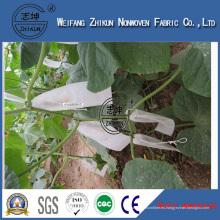 Tela no tejida resistente ULTRAVIOLETA de los PP para la agricultura