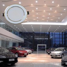 2016 Ventes directes d'usine chaudes Siamese Spotlight