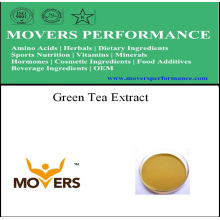 Extracto de Hierbas Orgánicas Extracto de Té Verde