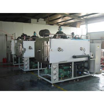 Máquina de secado por congelación para fruta fresca