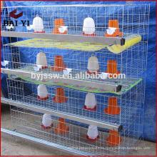 cage de poussin, cage de poussin de bébé, poussins d'un jour à vendre