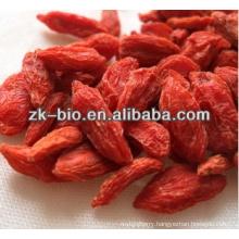 100% Natural Dried Goji berry