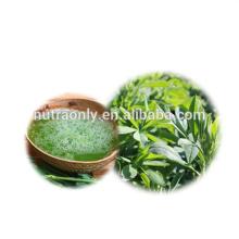 Polvo de jugo de alfalfa orgánico verde natural puro
