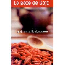 BAIES DE NINGXIA GOJI