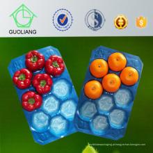GV do fornecedor de China para as bandejas descartáveis do fruto feitas do padrão 100% da segurança alimentar do polipropileno do Virgin