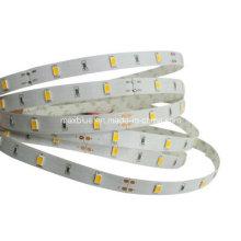 DC12V 30LEDs / M Luz de tira flexible del LED de Samsung 5630