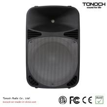 Professional 12 Inch PA Speaker Box