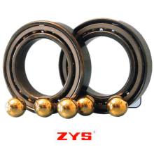 Roulement de lubrifiant solide Zys portant avec lubrifiant solide