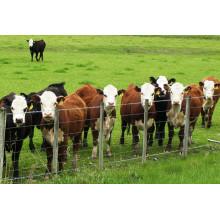 оцинкованная крупный рогатый скот забор панели / панели ограждения пастбищ