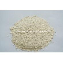 Garlic Powder 80-120 Mesh