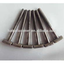 half thread T type bolt,costomed stainless steel T bolt, T handle bolt