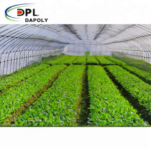Factory Price Anti Insect Screen Greenhouse Agricultural Tomato Protect Insect Proof Mesh Fine Mesh Net