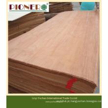 Folheado de madeira de corte rotativo e corte com alta qualidade