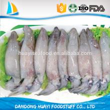 Exporter les calamars de priorité prioritaire HACCP ISO FDA certifiés