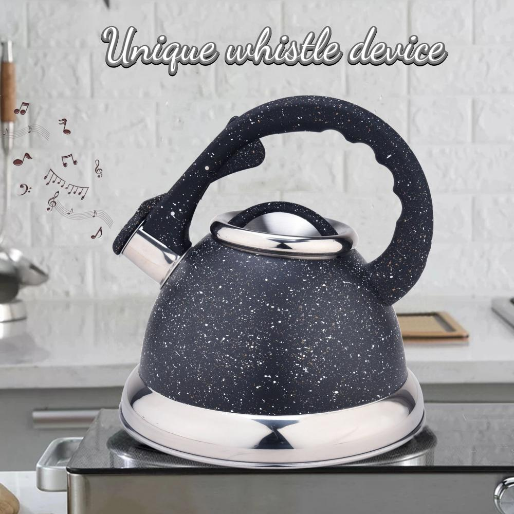 Black Stainless Steel Whistling Teapot