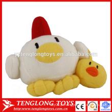 Engraçado, brinquedo, enchido, galinha, ovos