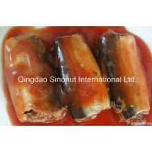 125г Консервированная сардина в томатном соусе с чили